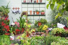 Bring Contrast Into Your Home with DIY Raised Garden Design Ideas Gardening is a fantastic and worthwhile hobby as it provides you not only with a creative outlet, but also with fresh produce for you and your family to enjoy. Landscape Structure, Landscape Design, Garden Design, Back Gardens, Small Gardens, Gardening For Beginners, Gardening Tips, Kitchen Gardening, Diy Garden