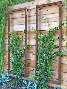 The INA WALL TRELLIS SR from Terra Trellis. A colorful modern trellis, perfect for vertical gardens, patios, wall gardens, small garden spaces. Wall Trellis, Garden Trellis, Metal Trellis, Vine Trellis, Trellis On Fence, Planters On Fence, Deck Trellis Ideas, Hanging Plants On Fence, Outdoor Wall Planters