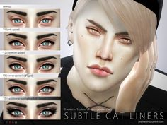 TSR : Pralinesims' Subtle Cat Liners N29.