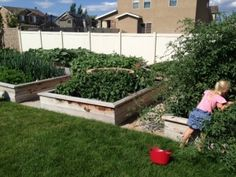 Top 10 Reasons Growing a Garden Helps your Family Be Healthier | Healthy Ideas for Kids