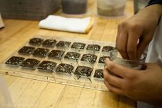 Sprinkling our hand-crafted Bittersweet Dark Chocolate Tiles with Grey Sea Salt, the final step after the chocolate has been molded.