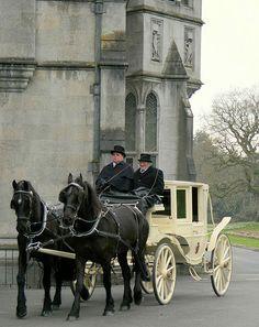 Horse drawn carriage at Adare Manor - Ireland