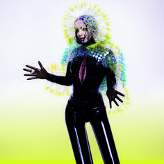 As Björk Opens at MoMA, Behind the Scenes of Her Most Iconic Images