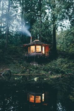 Tiny cabin deep in the woods of the North Cascades, WA : CozyPlaces