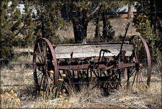 Horse Drawn Planter Photograph  - Horse Drawn Planter Fine Art Print