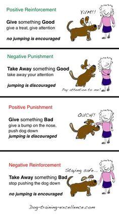 Operant Conditioning, using positive vs. negative dog training methods correctly