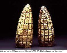 Mochica Golden ears of maize 1-800 AD Apogee Epoch  