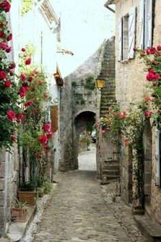Narrow street in france