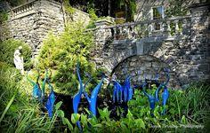 botan garden, botanical gardens