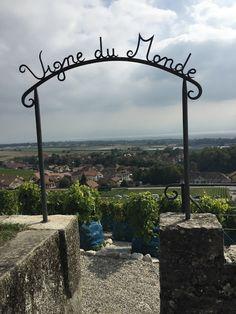 Viinijuhlat pikkuruisessa Fechyn kylässä tarjoaa Sveitsiläisiä perinteitä musiikkia ja urheilua sekä muuta ohjelmaa. Unohtamatta tietenkään mahdollisuutta maistella Fechyn kylän hyviä viinejä.