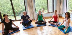 Online Yoga, Yoga Videos, How To Do Yoga, Yoga Meditation, Physics, Shelf, Youtube, Shelving, Shelves
