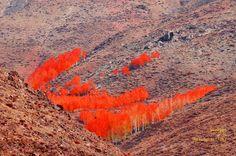 Late October On Mountains by Nesiho  Asiraki on 500px