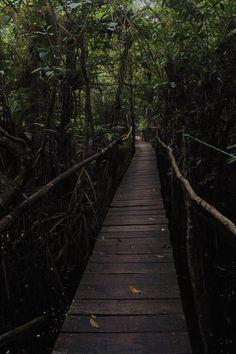 Río Dulce, Izabal, Guatemala