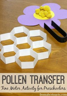 The perfect spring activity for preschoolers! Practice those fine motor skills while learning about bees and how they pollinate flowers at the same time! preschool Pollen Transfer: Fine Motor Activity for Preschoolers - From ABCs to ACTs Preschool At Home, Preschool Science, Preschool Lessons, Preschool Learning, Preschool Crafts, Spring Preschool Theme, Preschool Ideas, Preschool Printables, Daycare Crafts