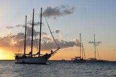 #Martinique Pointe du Bout, Trois Ilets © Gil Giuglio