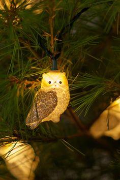 Night Owl Lights - anthropologie.com