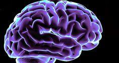 Neuromarketing | MediaGuru