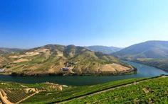 Os melhores hotéis vinícolas do Douro | SAPO Viagens