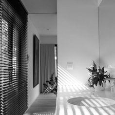 STAM architecten — Woning GOOS Ramen, Blinds, Patio, Curtains, Home Decor, House, Arquitetura, Houses