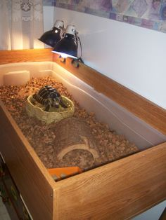"""Tortoise cage made out of a repurposed book case and a """"under-the-bed"""" storage container."""