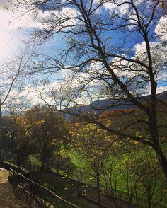 Autumn at Colognole