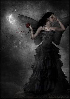 """She Never knew love again until she found roses at her door with a tag that said """"I have loved you since the first day I met you,you may be a fallen angel cursed to the dark but I see light in you and it's as bright as the sun-Jack"""""""