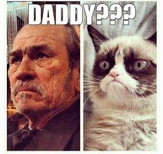 Grumpy Cat Reunites