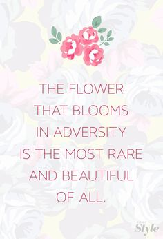 voyagevisuelle:The Flower That Blooms In Adversity Is The Most Rare And Beautiful Of All. ~ VoyageVisuelle ✿⊱╮