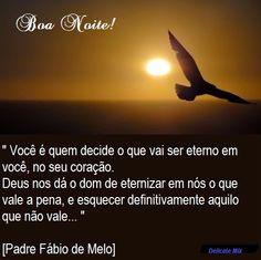Delicate Mix: Padre Fábio de Melo - Você é quem decide...