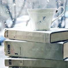 A good book and a cup of tea on a snowy day.