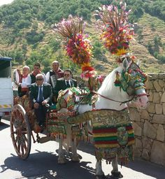 Carretto.   Sicily  My parents always had a ceramic donkey with a colorful cart  in front of the houses we lived in!