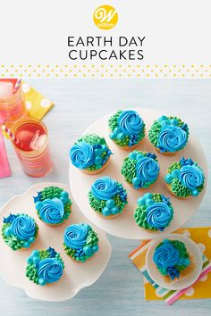 These bold and beautiful Happy Earth Day cupcakes are delightful! Decorated using a variety of piping techniques, including the rosette, ruffle, star and dots, these buttercream cupcakes are a tasty and fun way to celebrate the Earth's beauty or for any occasion! #wiltoncakes #cupcakes #cupcakeideas #cupcakedecorating #cupcakeprojects #earthday #earthdaytreats #treatideas #snacks #treatsforschool #buttercreamfrosting #frosting #blue #green #pipingskills #pipingtips #wiltontips