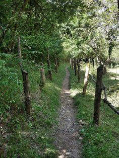 Camino de Santiago day 1