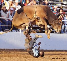 Holly Roller leaps over rider Elliot Jacoby at the 98th Annual Clovis Rodeo in Clovis, Calif.