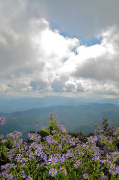 View from Wayah by esywlkr Franklin North Carolina, Never Grow Old, Nature Pictures, Tumblr, Clouds, Mountains, Places, Travel, Beautiful