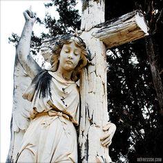 Angel in Málaga's English Cemetery