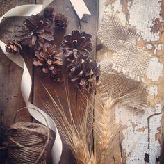 Winter elements {Botany Floral Studio}