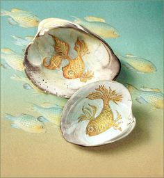 painted fish on clam shells