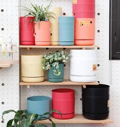 In a range of fresh summer colours we love these self-watering planters because they help take care of your plants in case you forget. These award-winning pioneering planters are Australian designed & easy to use. Simply water from above for the first few days then top up via the water well at the bottom. Prices start from only $9.50 & are available in store & online. k o s k e l a 1/85 Dunning Ave Rosebery 02 9280 0999   info@Koskela.com.au www.koskela.com.au #Koskela #KoskelaGarden…