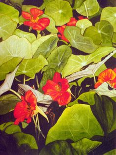 """Nasturtiums in Freefall"" was painted from a cluster of the flowers that blanketed a wheelbarrow. 8.5x11 signed print available. $75"