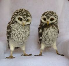 Ralph and Alice, the needled felted owls