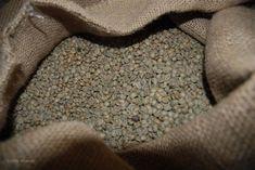 A zöldkávé az a kávébab, ami még nincs megpörkölve, ezért nem veszítette el az egyik legfontosabb  összetevőjét a klorogénsavat. Blog, Blogging