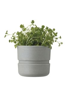 Herb pot by RIG-TIG. www.rig-tig.com
