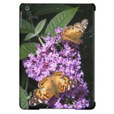 Twin Butterflies ~ iPad Air case ~ A couple pretty Painted Lady butterflies feasting on lavender Butterfly bush flowers.
