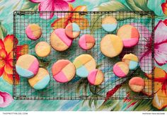 Coated in brightly-coloured royal icing, these lemon shortbread cookies are not only a delight to the taste buds, but a feast for the eyes too! | Photographer: Tasha Seccombe Photography | Food Stylist and Recipe Developer: The Food Fox