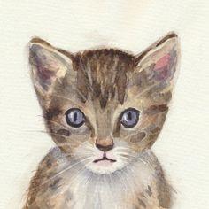 mačka,akvarel,watercolor