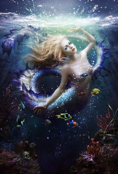 This is the current cover on Australia's issue of ImagineFX, a fantasy and sci-fi digital art magazine. It is the very first mermaid cover they've done, painted by Melanie Delon! Fantasy Creatures, Mythical Creatures, Sea Creatures, Fantasy Mermaids, Mermaids And Mermen, Fantasy World, Fantasy Art, Melanie Delon, Sea Siren