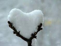 Αποτέλεσμα εικόνας για hearts in nature