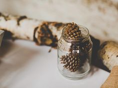Gather pinecones to create natural decorations