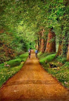Get in the great outdoors this year on a family bike ride - France is the perfect place with lots of gorgeous, green bike tracks.
